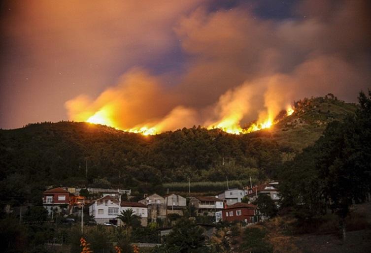 Un granito de arena para luchar contra los incendios forestales
